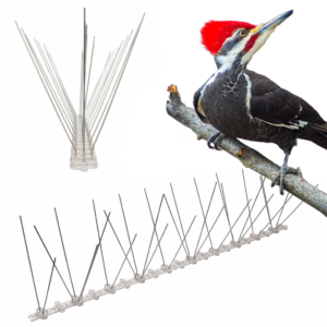 spikes for woodpeckers