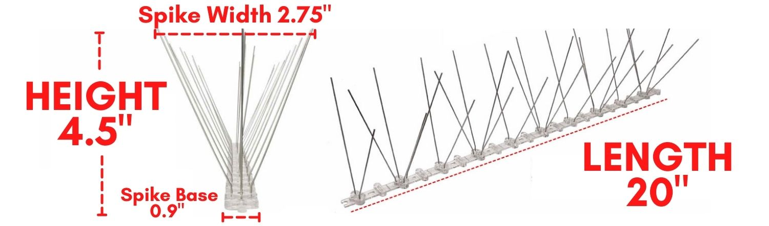 where to buy stainless anti bird spikes online